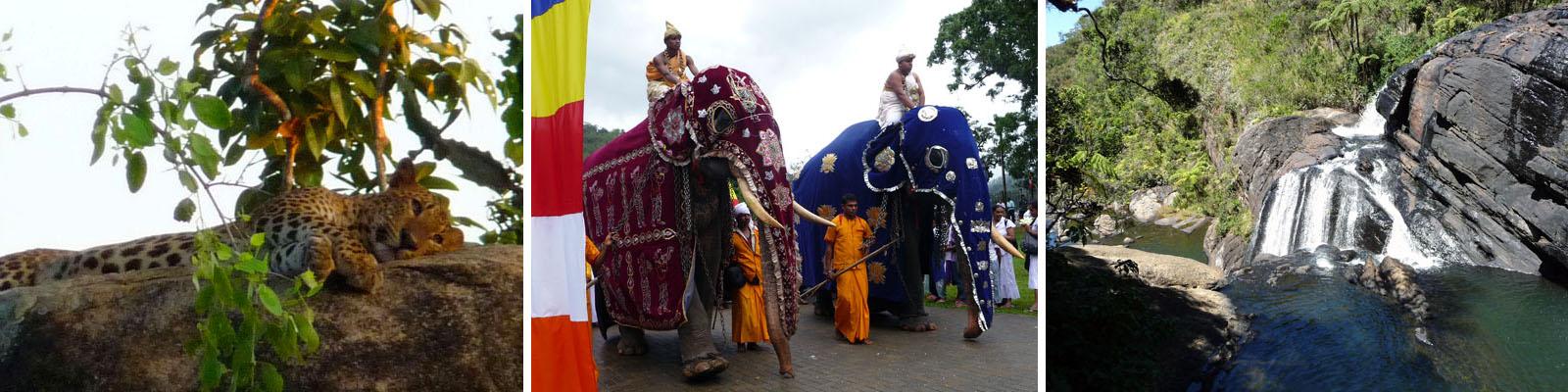 Sri Lanka Rundreise Süd-Westen mit Yala