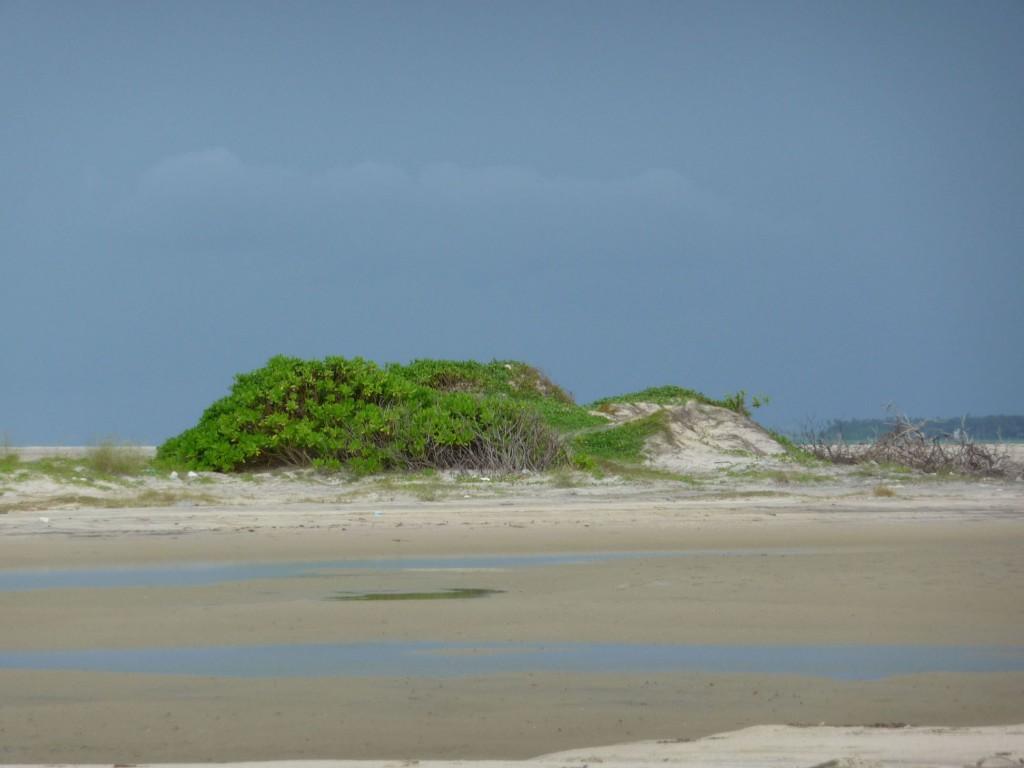 Besuch der Sandbänke der Adam's Bridge bei unserer Sri Lanka Rundreise Richtung Norden.