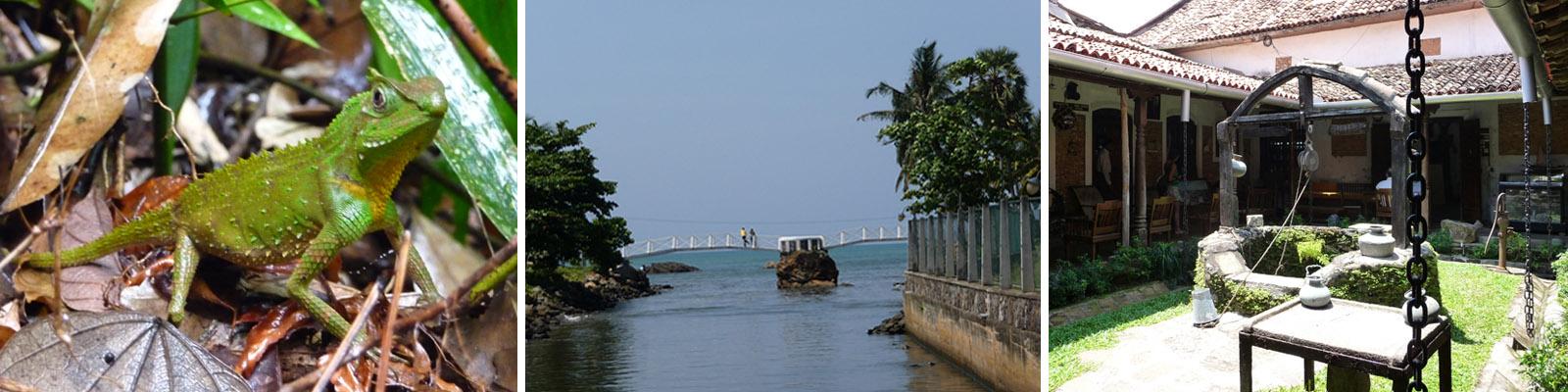 Tagesausflug Sri Lanka